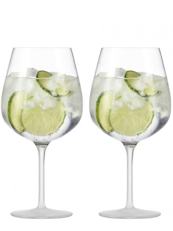 EISCH Gin Tonic Glas Secco Flavoured seidenmatt - 2 Stück im Geschenkkarton