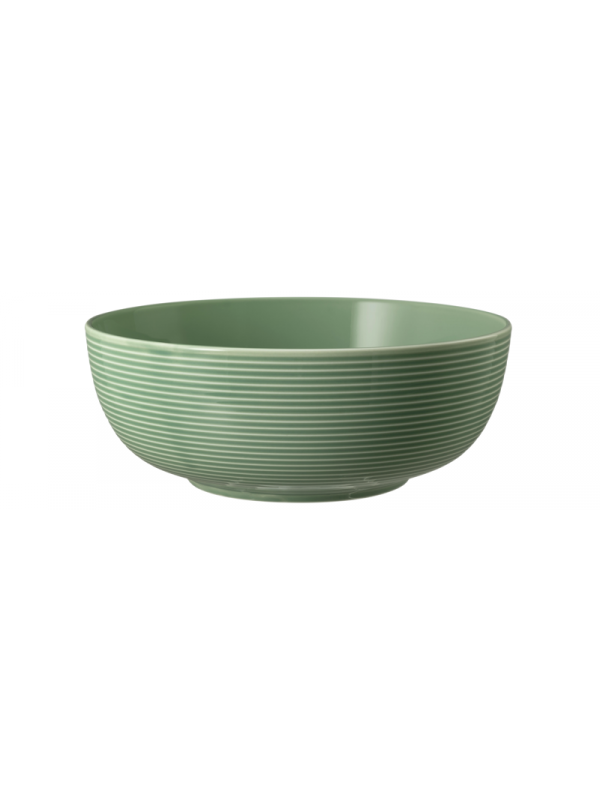 SELTMANN WEIDEN Foodbowl 20 cm Beat Color Glaze
